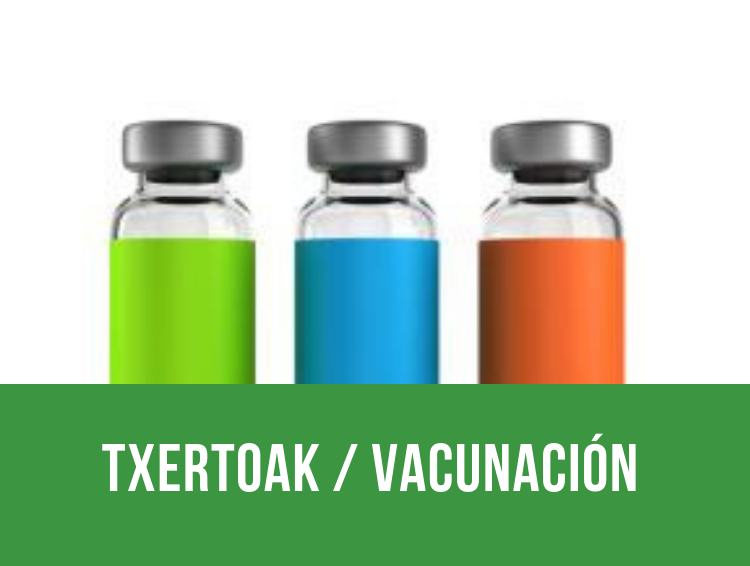 txertoak _ vacunación